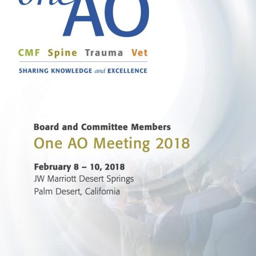 Feb 2018: OneAO Meeting 2018