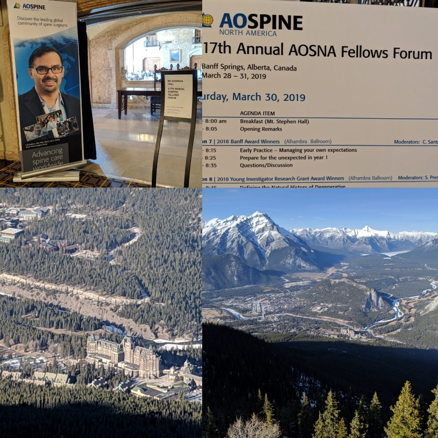 March 2019: Privilege to be faculty for the AO Spine 17th Fellows Forum in Banff, Canada