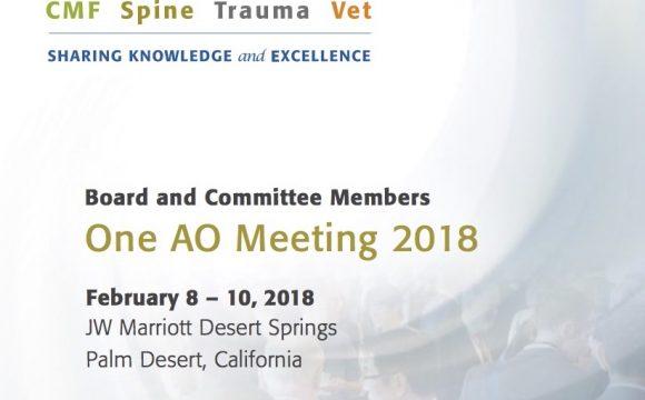 Feb 2018: OneAO Meeting 2018